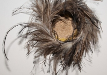 Tjanpi basket trimmed with feathers